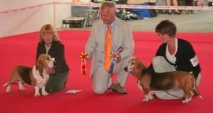 Buzio Bessie WW 2010 d1 300x160 Buzio champion du monde 2010
